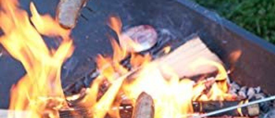 Campfire Roasting