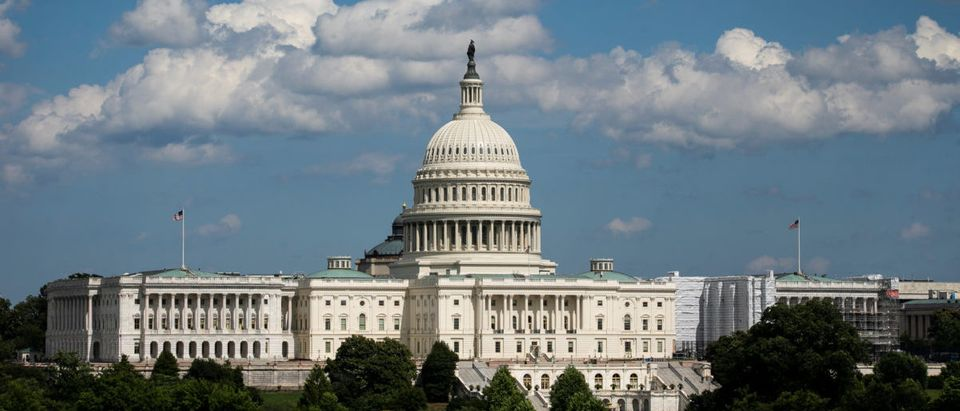 A view of the U.S. Capitol, in Washington DC