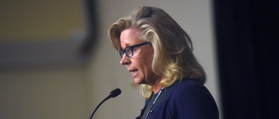 """U.S. Representative Liz Cheney addresses the media during the 2017 """"Congress of Tomorrow"""" Joint Republican Issues Conference in Philadelphia, Pennsylvania"""