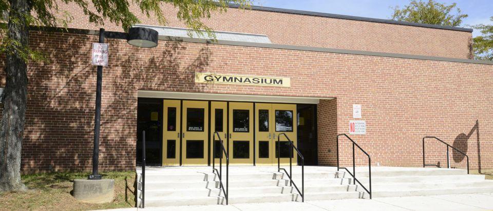Children_Gym (Credit: Shutterstock Cynthia Farmer)