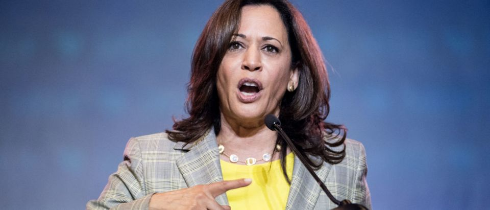 Democratic presidential candidate. Kamala Harris addresses the crowd at the 2019 South Carolina Democratic Party State Convention. (Sean Rayford/Getty Images)