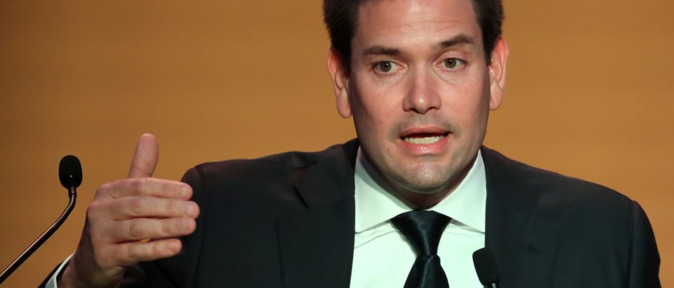 U.S. Sen. Rubio speaks during a news conference at the VIII Summit of the Americas in Lima