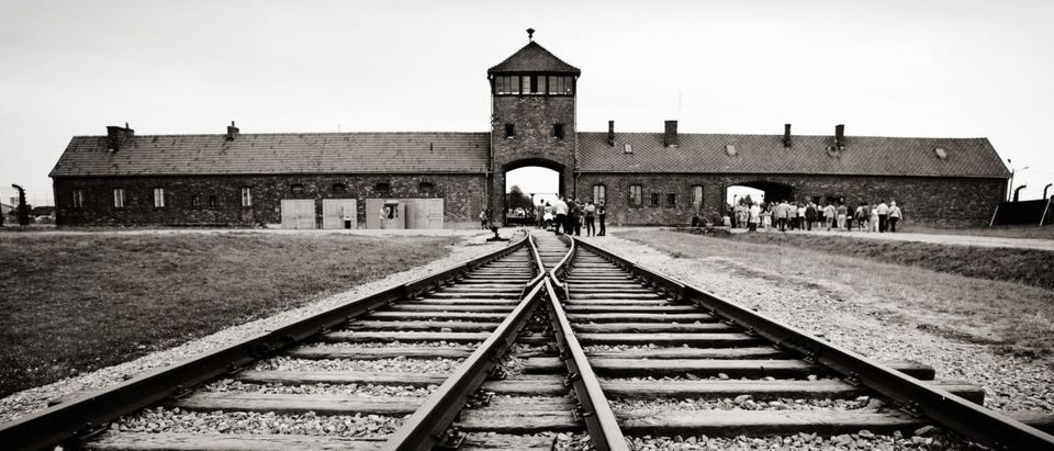 Historical view of Auschwitz death camp (Shutterstock)