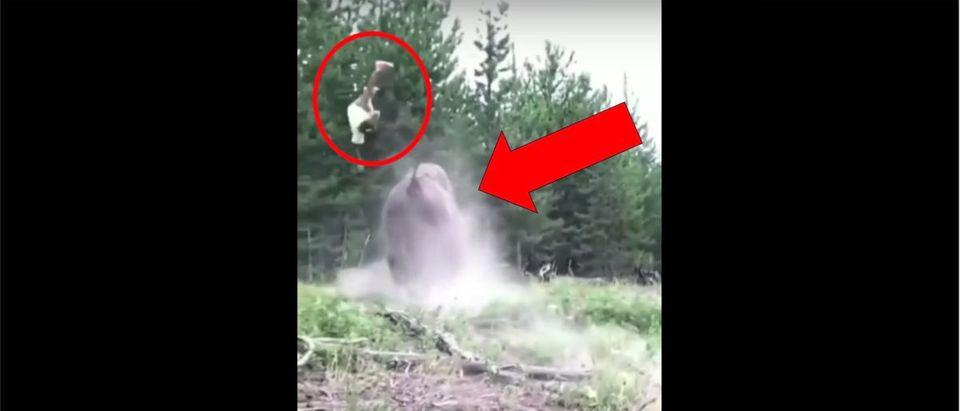 Bison Girl Video (Credit: Screenshot/YouTube Video https://www.youtube.com/watch?v=TugEGRRWasc)