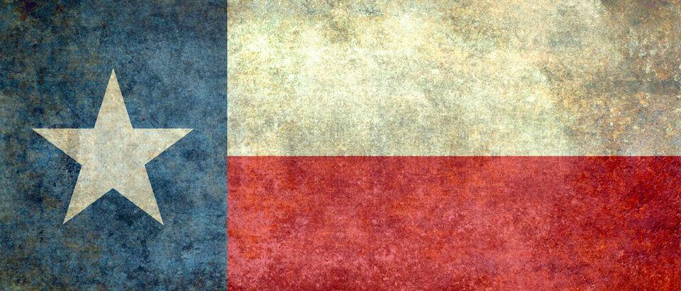 Texas flag, Bruce Stanfield, Shutterstock