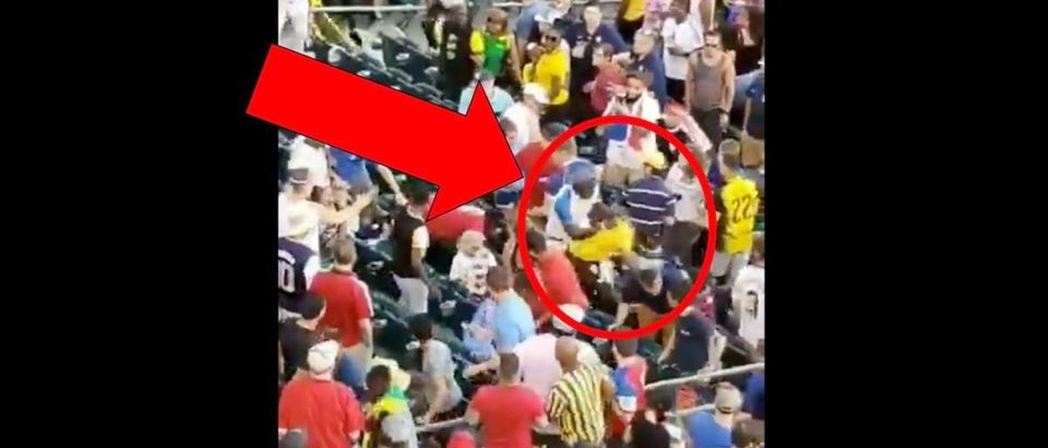 Gold Cup Fight (Credit: Screenshot/Twitter Video https://twitter.com/Brocopio26/status/1145484046027374592)