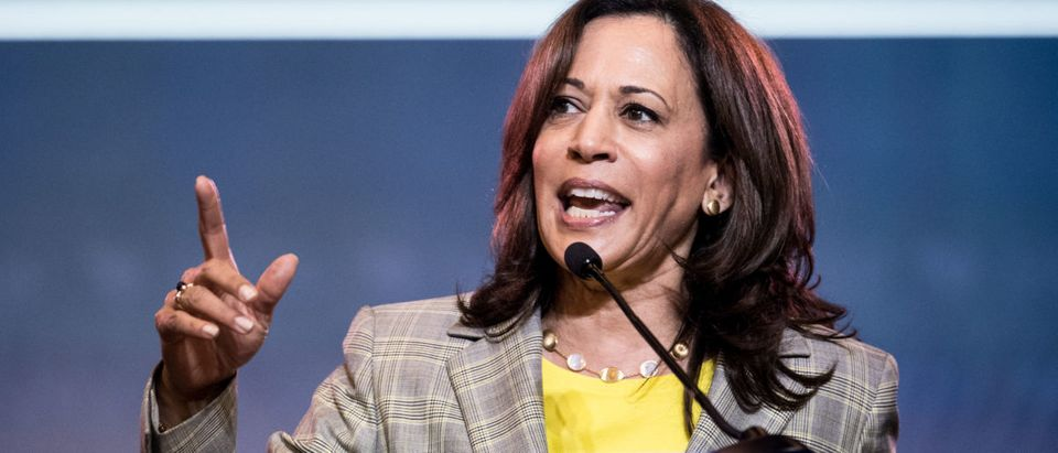Democratic presidential candidate, Sen. Kamala Harris addresses the crowd at the 2019 South Carolina Democratic Party State Convention. (Sean Rayford/Getty Images)