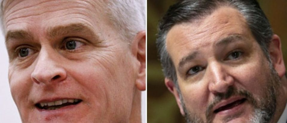 Ted Cruz and Bill Cassidy Antifa bill