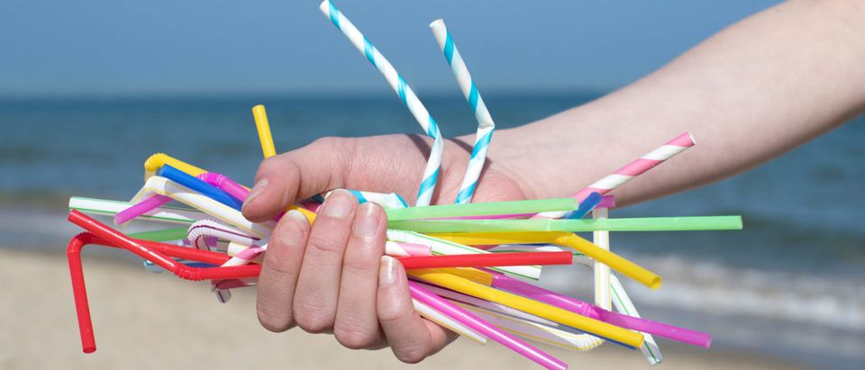 Plastic Straws (Shutterstock)