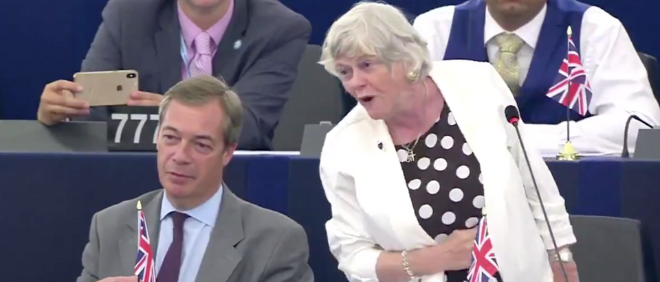 Ann Widdicombe delivers maiden speech at European Council. Screen Shot/Twitter/@BrexitParty_UK