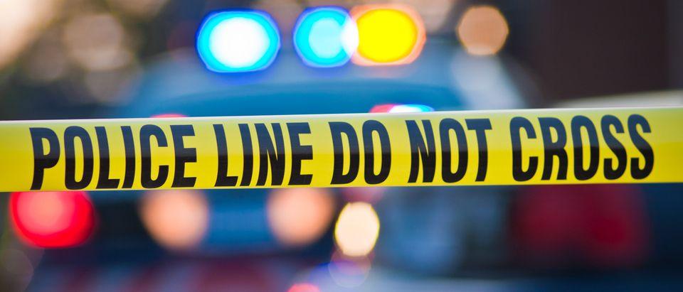 Florida teen school shooting. Carl ballou, Shutterstock