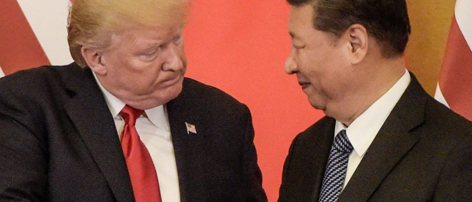 US President Donald Trump (L) shakes hand with China's President Xi Jinping at the end of a press conference / FRED DUFOUR/AFP/Getty Images