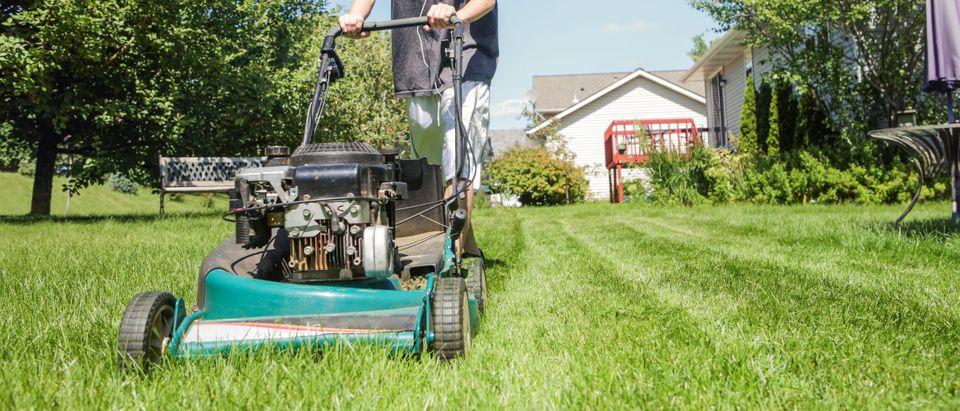 Mowing Lawn. Shutterstock