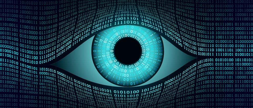 Spying. (Shutterstock/Valery Brozhinsky)