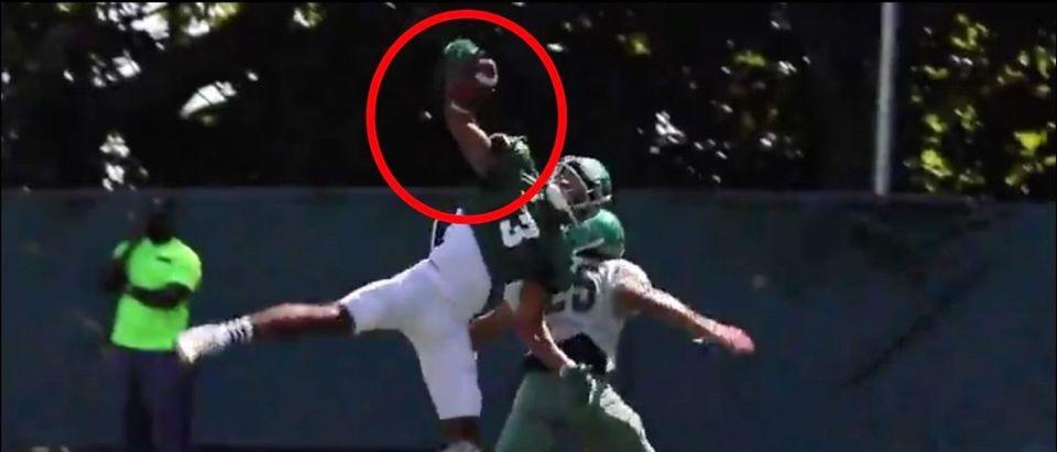 Wagner Catch (Credit: Screenshot/Twitter Video https://twitter.com/Wagner_Football/status/1160254160476037121)
