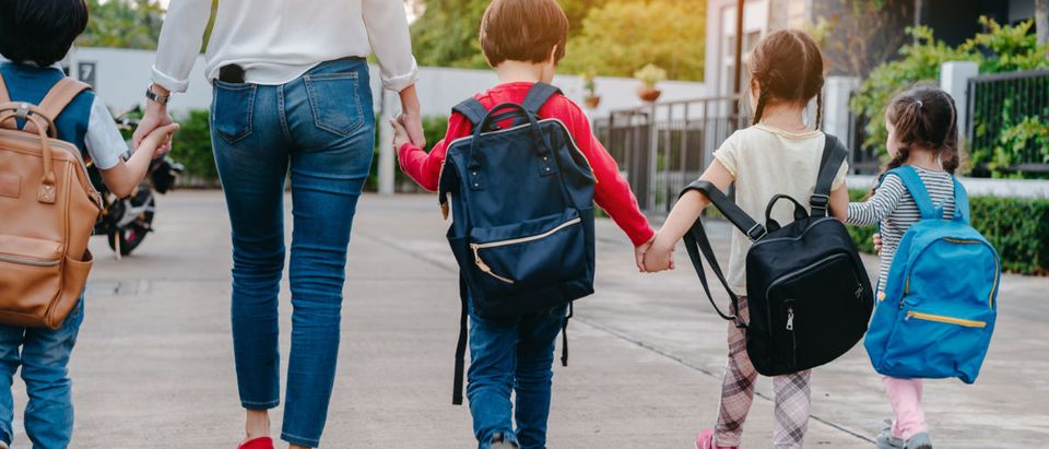 Mother and pupil and kids holding hands going to school in first class with schoolbag or satchel walking to school bus, Parent and son,sister preschool(shutterstock_Zodiacphoto)