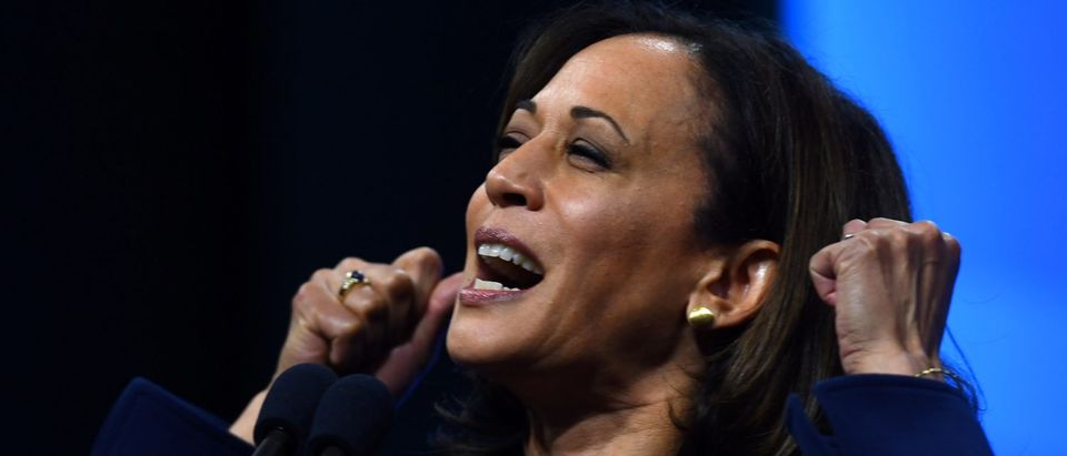 Democratic 2020 U.S. presidential candidate and U.S. Sen. Kamala Harris speaks at the New Hampshire Democratic Party state convention in Manchester, New Hampshire, U.S., Sept. 7, 2019. REUTERS/Gretchen Ertl
