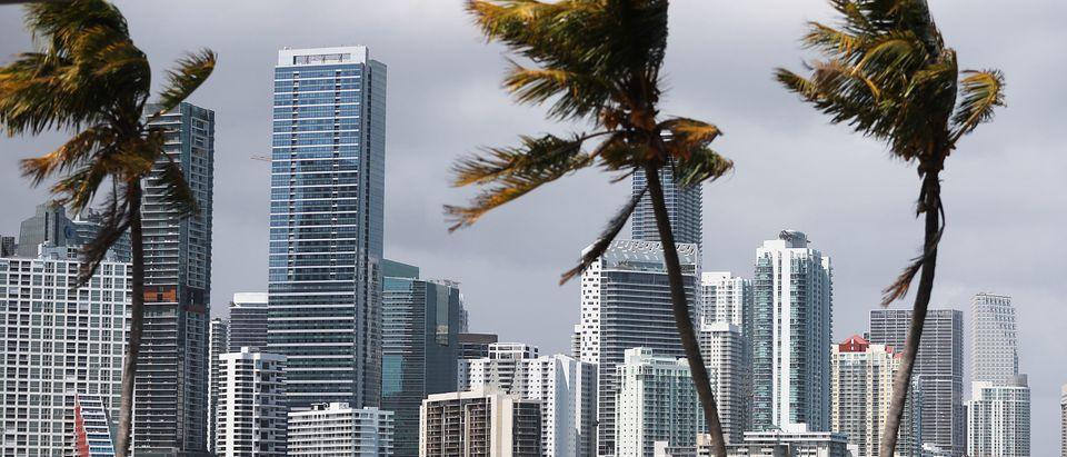 Miami, Florida. (Photo by Joe Raedle/Getty Images)