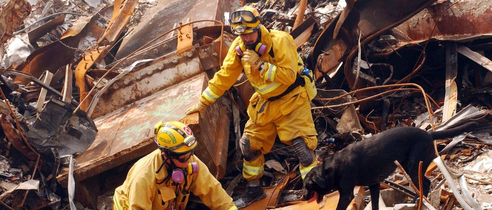Mike Scott from the California Task Force-8 and his dog, Billy, search through rubble for victims of the September 11 terrorist attack at the World Trade Center September 21, 2001 New York City, NY. (Andrea Booher/FEMA/Getty Images)