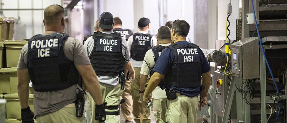 Homeland Security Investigations (HSI) officers from Immigration and Customs Enforcement (ICE) look on after executing search warrants and making some arrests at an agricultural processing facility in Canton, Mississippi, U.S. in this Aug. 7, 2019 handout photo. Immigration and Customs Enforcement/Handout via REUTERS