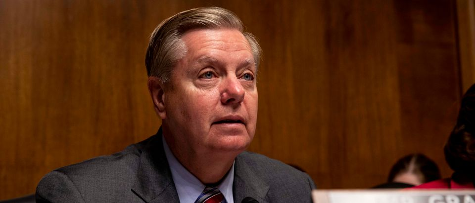Senate Judiciary Chairman Lindsey Graham speaks during a hearing on June 11, 2019. (Anna Moneymaker/Getty Images)