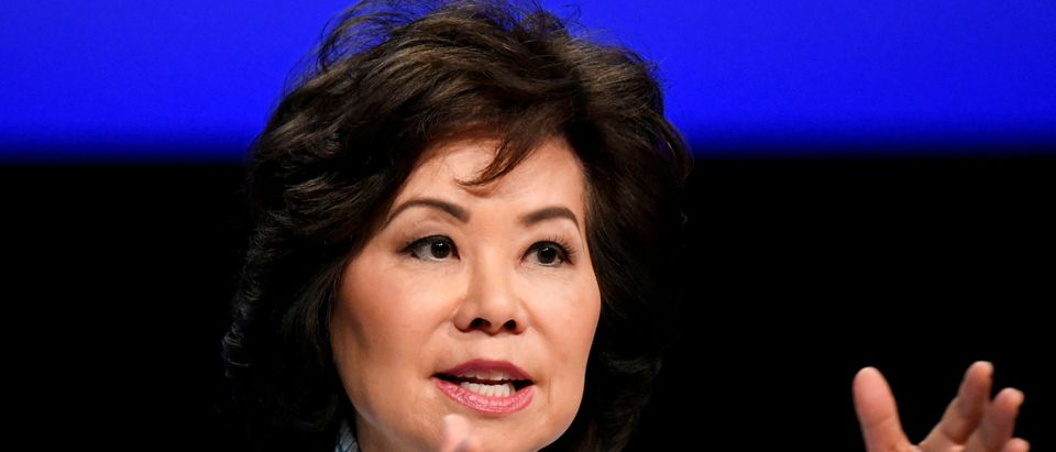FILE PHOTO: Elaine Chao, U.S. Secretary of Transportation speaks at the Global Entrepreneurship Summit 2019 (GES 2019) in The Hague, Netherlands June 4, 2019. REUTERS/Piroschka van de Wouw/File Photo
