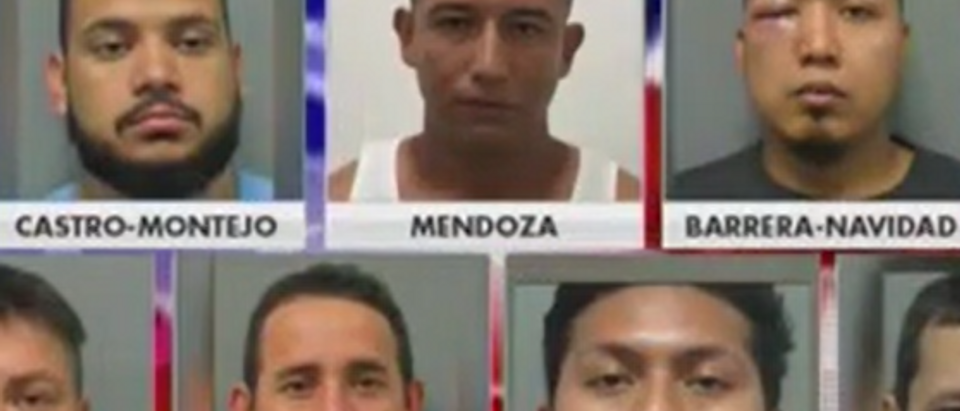 Vince Coglianese discusses MS-13 crime in Montgomery County Fox News screengrab)