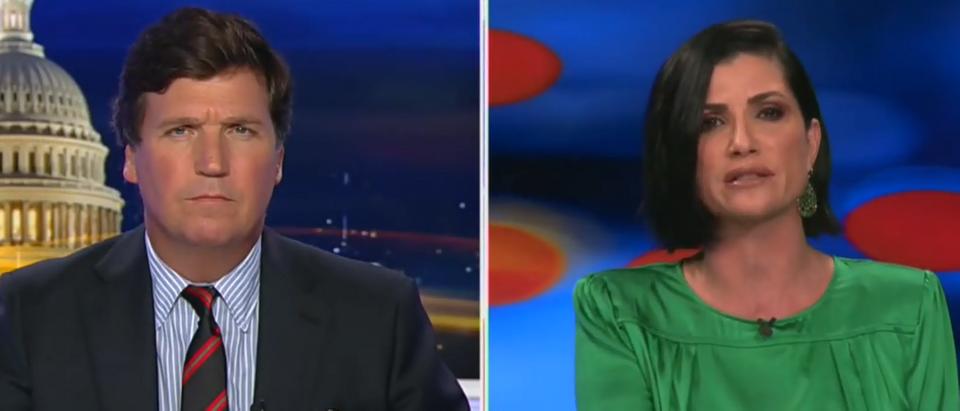 Dana Loesch on Democrats labeling gun owners (Fox News screengrab)