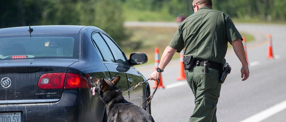 WEST ENFIELD, ME - AUGUST 01: A U.S. Border Patrol agent uses his K9 to look for drugs and hidden people at a highway checkpoint on August 1, 2018 in West Enfield, Maine. The checkpoint took place approximately 80 miles from the US/Canada border. (Photo by Scott Eisen/Getty Images)
