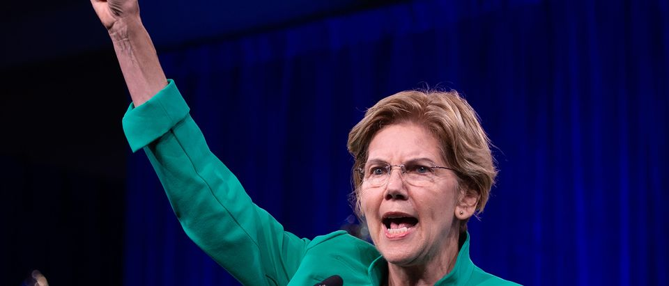 2020 US Democratic Presidential hopeful US Senator from Massachusetts Elizabeth Warren speaks on-stage during the Democratic National Committee's summer meeting in San Francisco, California on August 23, 2019. (JOSH EDELSON/AFP/Getty Images)