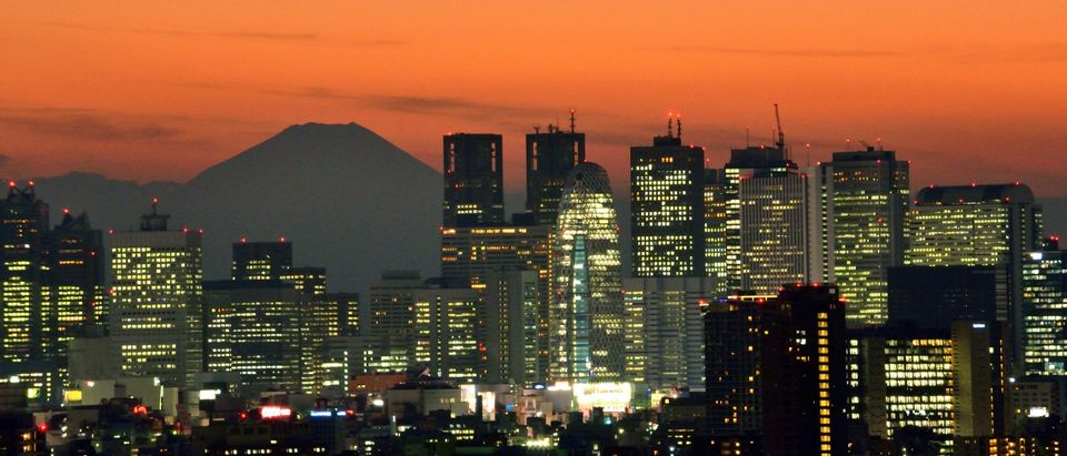 Japan's highest mountain Mount Fuji (top L) is seen behind the skyline of the Shinjuku area of Tokyo November 27, 2014.