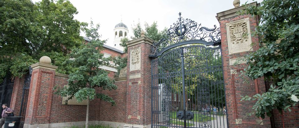 A gate in front of Harvard Yard as seen on August 30, 2018. (Scott Eisen/Getty Images)