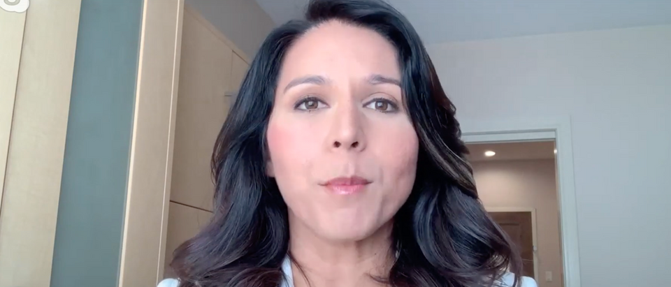Tulsi Gabbard admits Biden's Ukraine controversy could be a problem. (Screenshot/ YouTube/ The Hill)