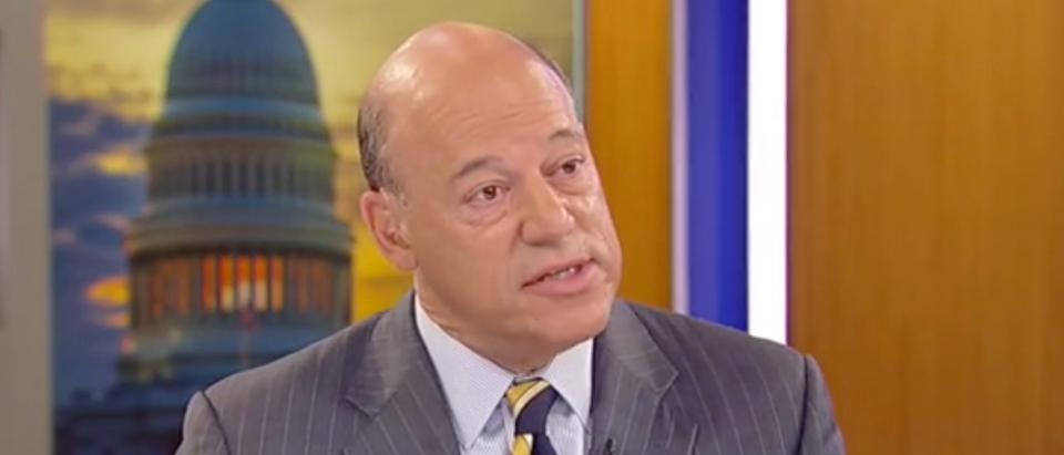 "Ari Fleischer appears on ""America's Newsroom."" Screen Shot/Fox News"