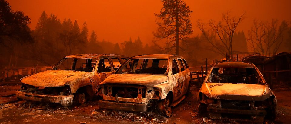 Cars destroyed by the Camp Fire sit in the lot at a used car dealership on Nov. 9, 2018 in Paradise, California. (Photo by Justin Sullivan/Getty Images)