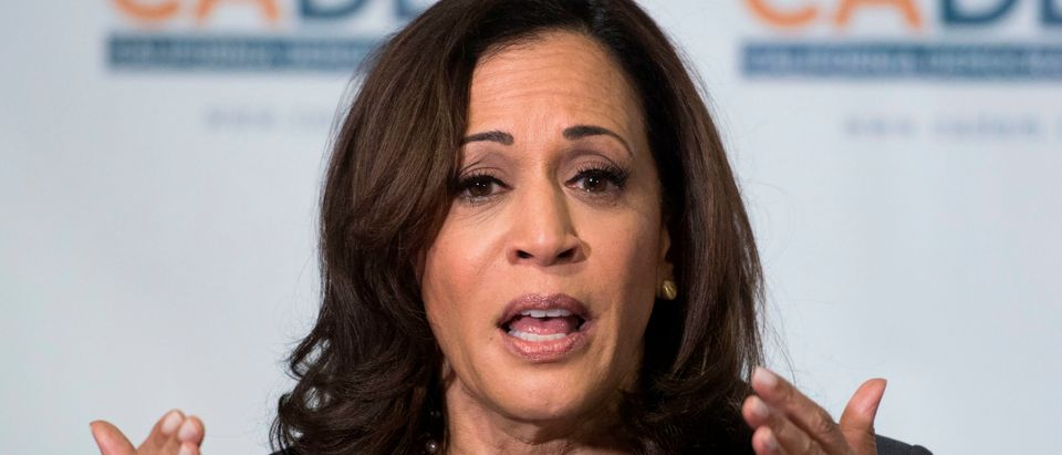 Democratic presidential hopeful, California Senator, Kamala Harris speaks at the California Democratic Party 2019 Fall Endorsing Convention in Long Beach, California. (MARK RALSTON/AFP via Getty Images)