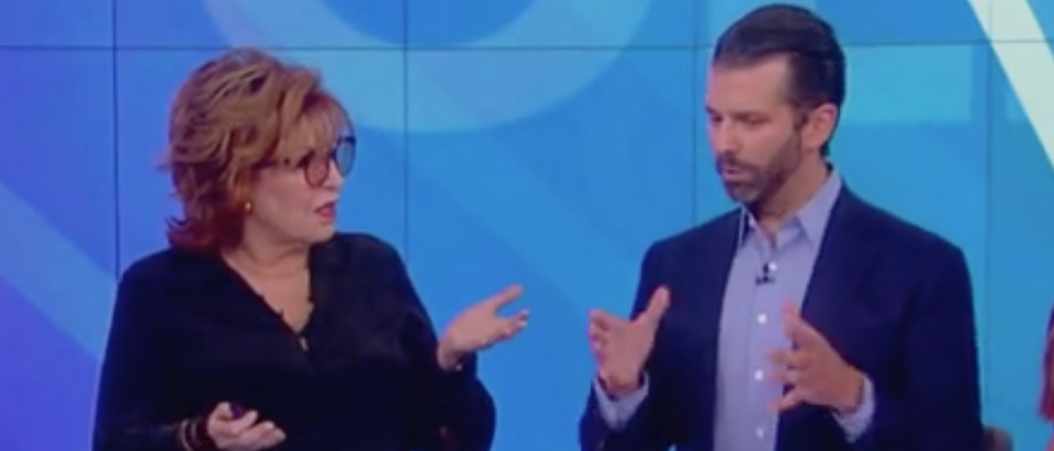 "Donald Trump Jr. appears on ""The View."" Screen Shot/ABC"