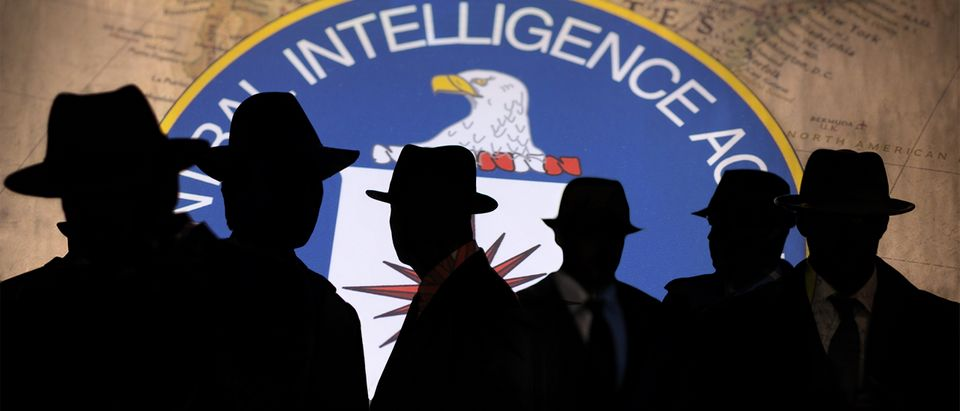 CIA logo (Getty Images, Shutterstock, Daily Caller)