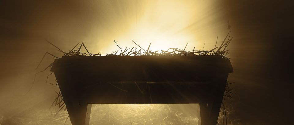 The first Christmas. Amanda Carden, Shutterstock