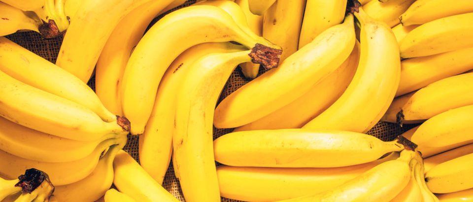 Banana (Credit: Shutterstock/ Hanna_photo)