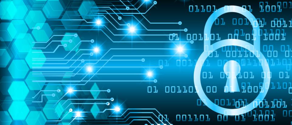 Cyberimage (Titima Ongkantong via Shutterstock)