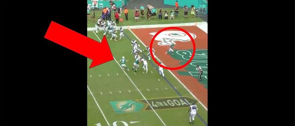 Miami Dolphins (Credit: Screenshot/Twitter Video https://twitter.com/MiamiDolphins/status/1201219406128459776)