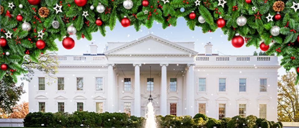 White House Christmas decorations (Getty Image, Shutterstock, Daily Caller)