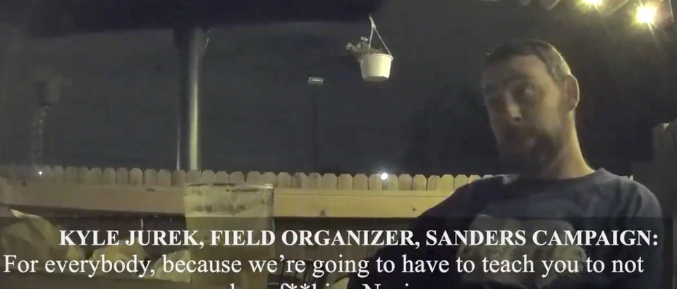 Project Veritas and Bernie Sanders Organizer