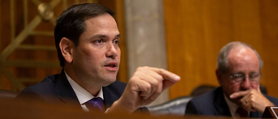 Sen. Marco Rubio (R-FL) questions Kelly Craft, President Trump's nominee to be Representative to the United Nations 1