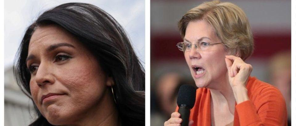 Tulsi Gabbard, Elizabeth Warren (Getty Images)