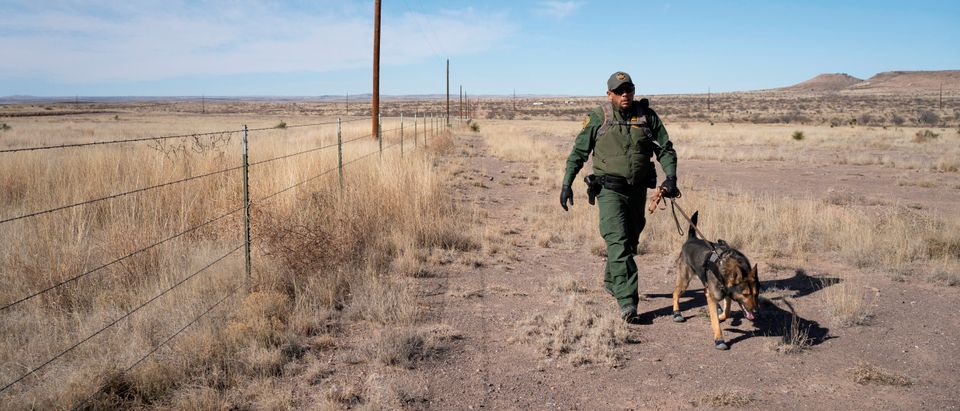 Canine Handler Agent Jose Solis, walks Max, a Belgian Malinois, while pursuing suspects near Marfa, Texas on Jan. 29, 2020. (Photo by PAUL RATJE/AFP via Getty Images)