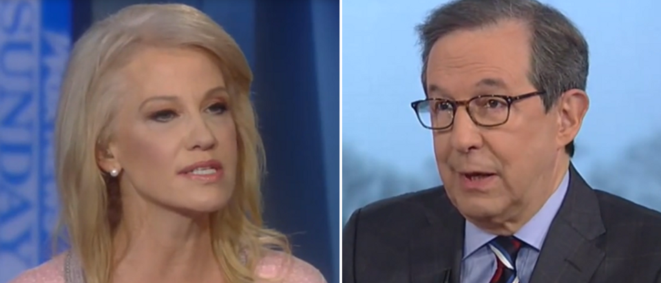Chris Wallace puts Kellyanne Conway on the spot on Stop and Frisk (Fox News screengrab)