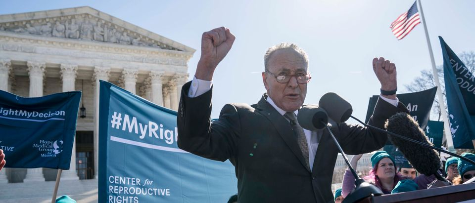 Advocates Rally In Washington As Arguments In Supreme Court Abortion Case June Medical Services V. Russo Are Heard
