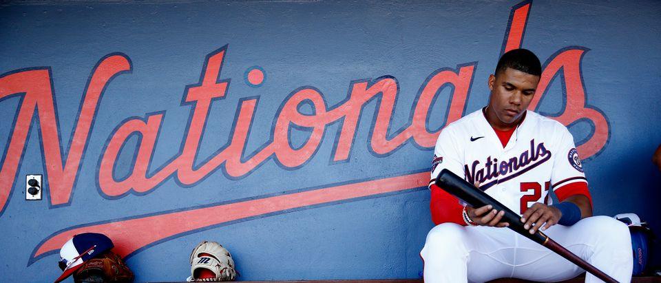 Major League Baseball Suspends Spring Training
